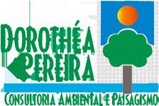 Dorothea Pereira